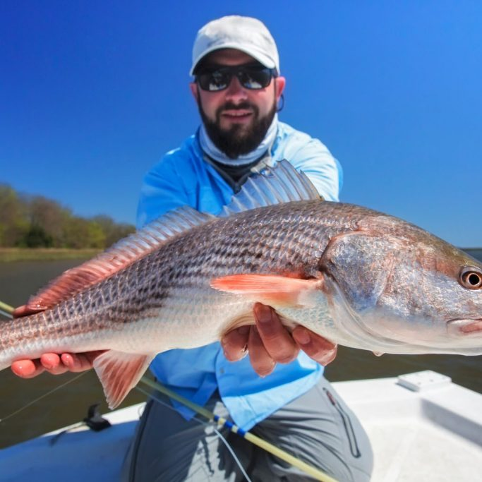 Fly fisherman holding a redfish